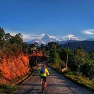 Mountain Bike Services