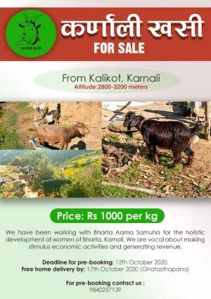 Karnali Khasi